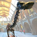 Dippy-at-NHM-London