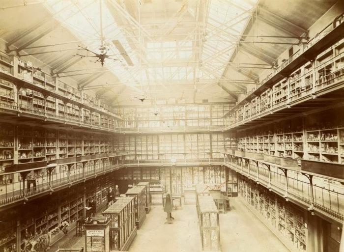 St Barts Pathology Museum Vintage Image